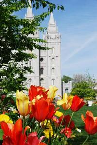 Salt Lake Mormon Temple © 2009 Intellectual Reserve